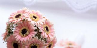 Gąbka florystyczna