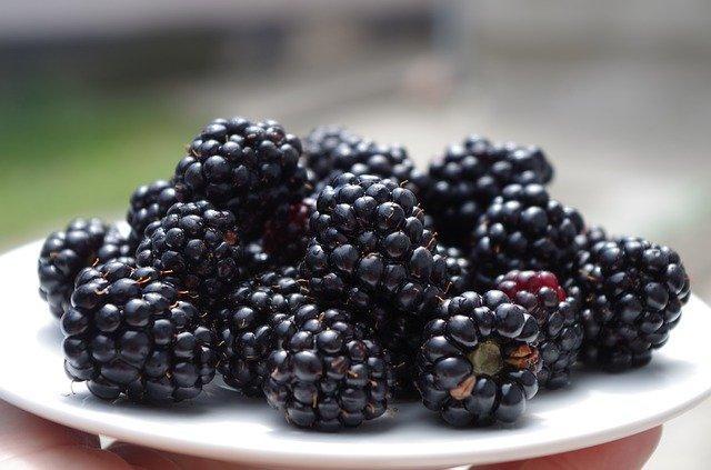 jeżyny, zdrowie, dieta