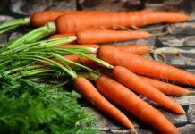 marchewka, zdrowie, dieta